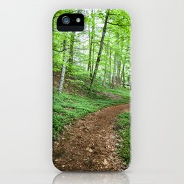 Into The Woods - Woodland Spring Path iPhone Case