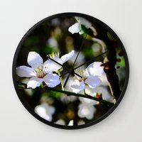 cherry blossoms Wall Clocks featuring Cherry blossoms by Monica Georg-Buller