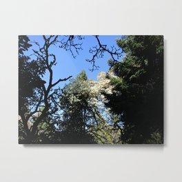 White Magnolia Metal Print
