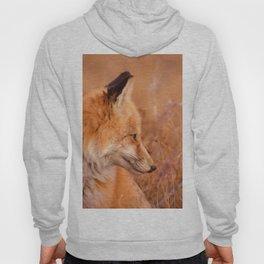 Found Fox Hoody