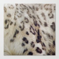snow leopard Canvas Prints featuring Snow Leopard by Pauline Fowler ( Polly470 )