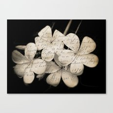 Letter from Paradise Canvas Print