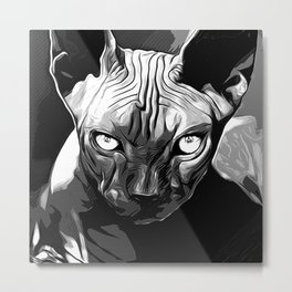 sphynx cat from hell vabw Metal Print