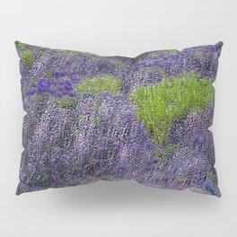 Lavender Fields Pillow Sham