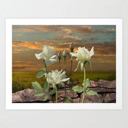 Flower of Light Art Print