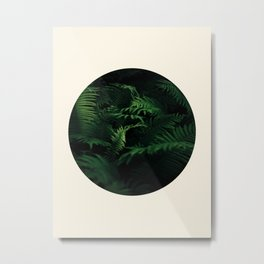 Fern Plant Against Black Background Round Frame Photo Metal Print
