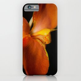 Orange Canna Lily at Longwood Botanical / Nature / Floral Photograph iPhone Case