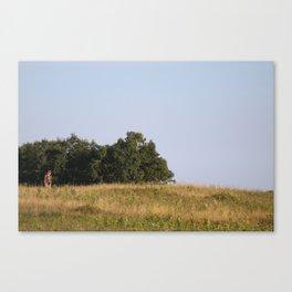 Lone Watcher Canvas Print