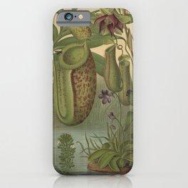 Antique Carnivorous Plants Lithograph iPhone Case