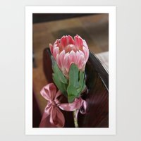 Protea down the ille Art Print
