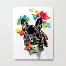 When a dog catches a rainbow Metal Print