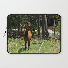 Rocky Mountain Wapiti Laptop Sleeve