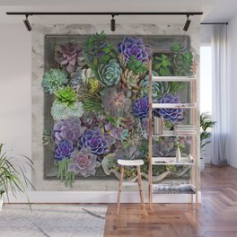 South Africa's Succulents Wall Mural