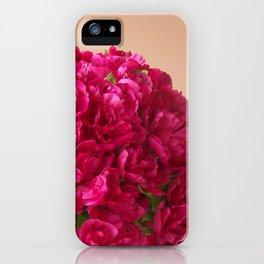 Girls 15th Birthday iPhone Case