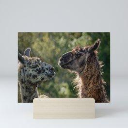 Sweet Llamas Mini Art Print