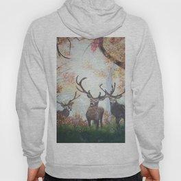 Morning Deer Hoody