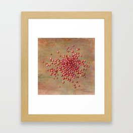 CRANBERRIES Framed Art Print