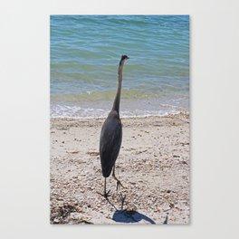 Restless Summer Canvas Print