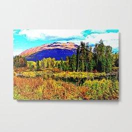 Nature's Dome Metal Print