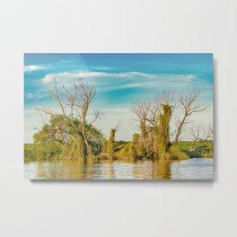 Parana River, San Nicolas, Argentina Metal Print
