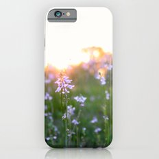 Sunset in Spring iPhone 6s Slim Case