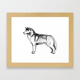 Siberian Husky Side Profile Framed Art Print