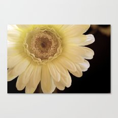 Welcome back Canvas Print