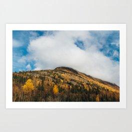 Autumn at Bird Creek IV Art Print