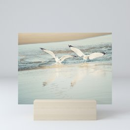 Seagull Beach Photography, Shore Birds Art, Pale Blue Ocean Bird Print, Coastal Photo Mini Art Print