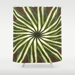 Cactus Garden Kaleidoscope 10 Shower Curtain