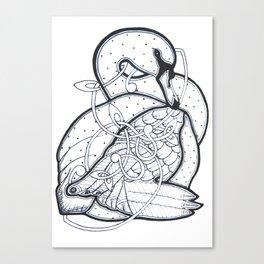 Carrick Swan Canvas Print