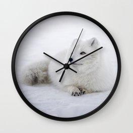 White snow arctic fox Wall Clock