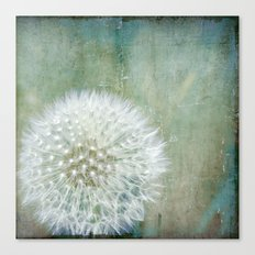 One Wish Canvas Print