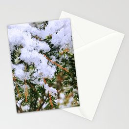 Snow on Evergreen Boughs Stationery Cards