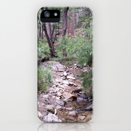Mt. Lemmon's Wonders iPhone Case