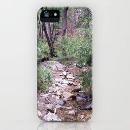 Mt. Lemmon's Wonders iPhone Case