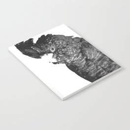 Black and White Cockatoo Illustration Notebook
