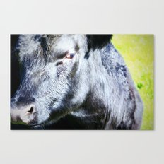 I'm Not Sure About You Canvas Print