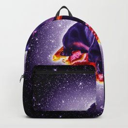 d31161d90c74 Outer Space Galaxy Dog Riding Pizza Backpack