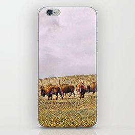 Montana Buffalo Range iPhone Skin