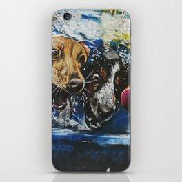 Underwater dogs iPhone Skin