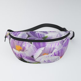 Purple and White Crocuses Fanny Pack