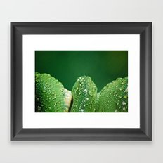 San Diego, California Framed Art Print
