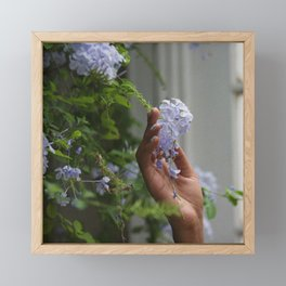 the last breath ~ flower ~ Framed Mini Art Print