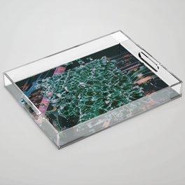 ËCIUV Acrylic Tray