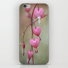 Dicentra iPhone & iPod Skin