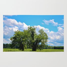 Country Scenery Rug