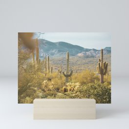 Desert Cactus Mini Art Print