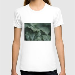 Raindrops On Leaves Art Print | Nature Photography | Moody Picture Of Raindrops On Leaf T-shirt