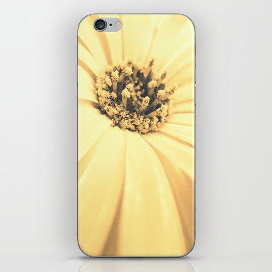 Champagne Petals iPhone & iPod Skin